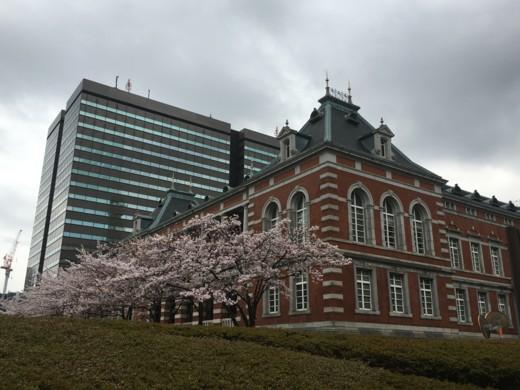 f:id:torimusi:20160401110400j:image