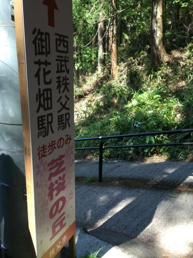f:id:torimusi:20160505135256j:image
