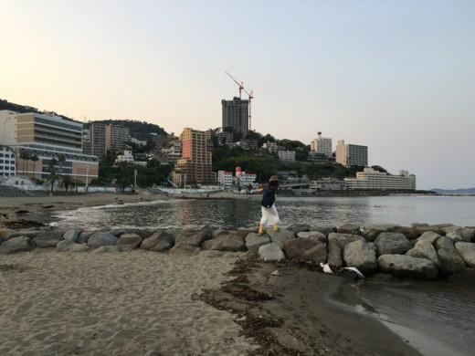 f:id:torimusi:20160522182139j:image
