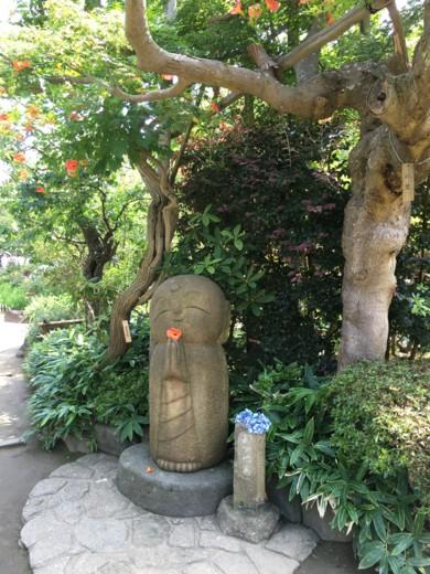 f:id:torimusi:20160701140949j:image