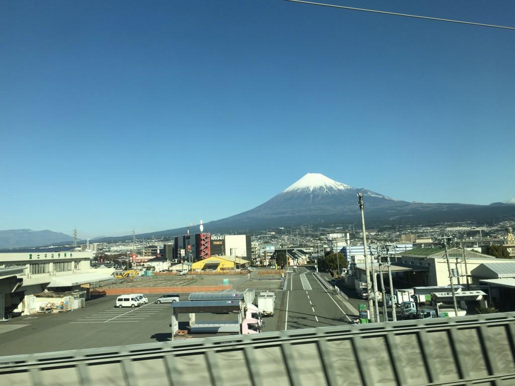 f:id:torimusi:20170102100741j:plain