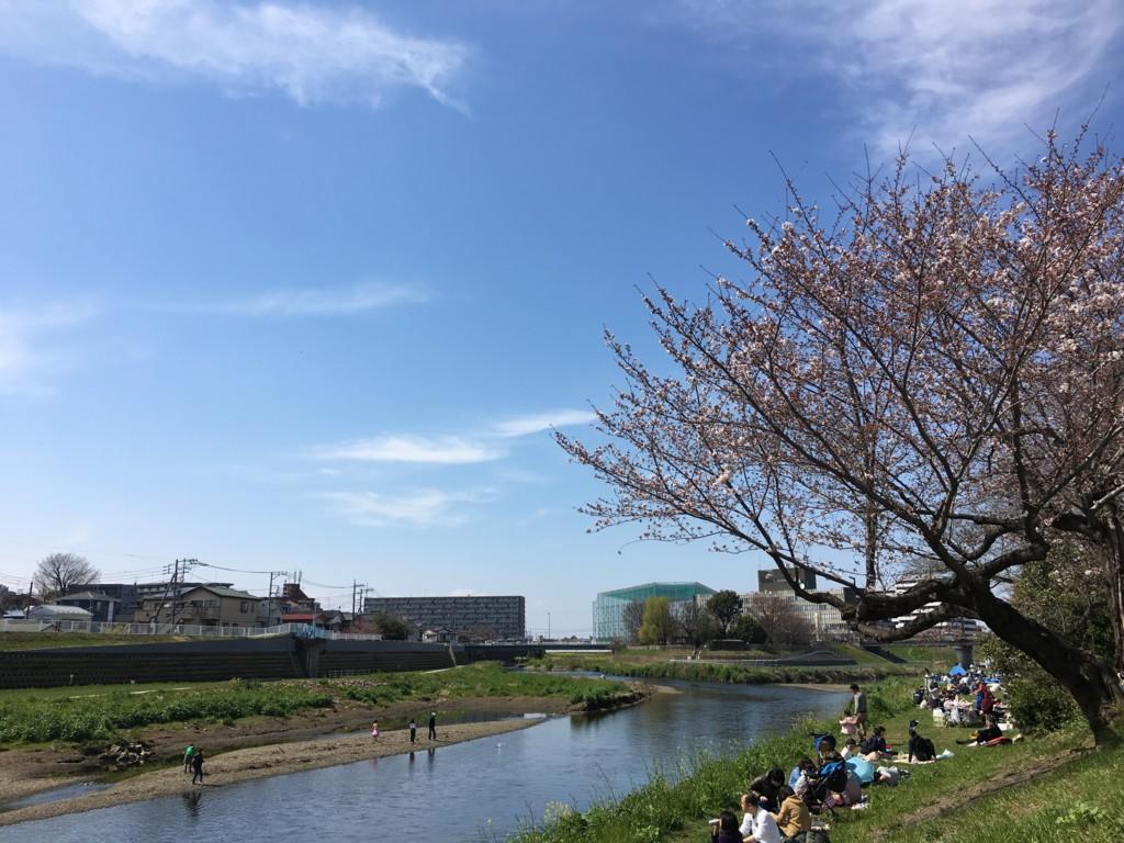 f:id:torimusi:20170402131036j:plain