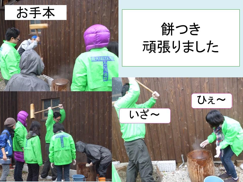 f:id:toririnkango:20170116200815j:plain