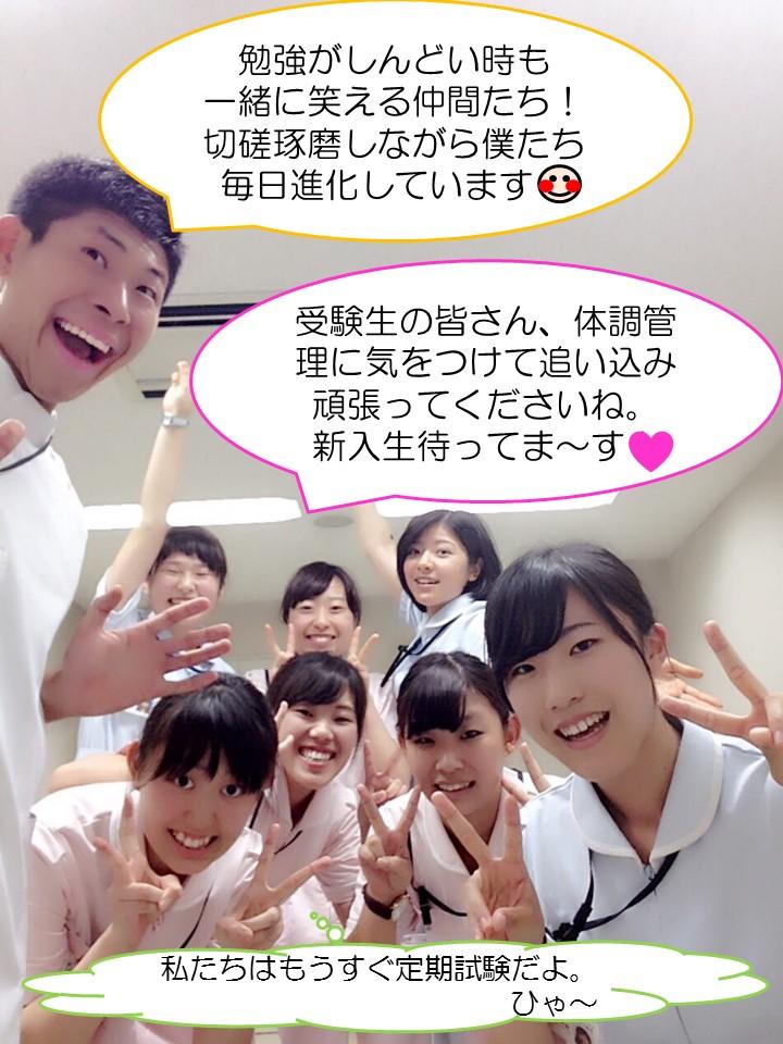 f:id:toririnkango:20170119205521j:plain
