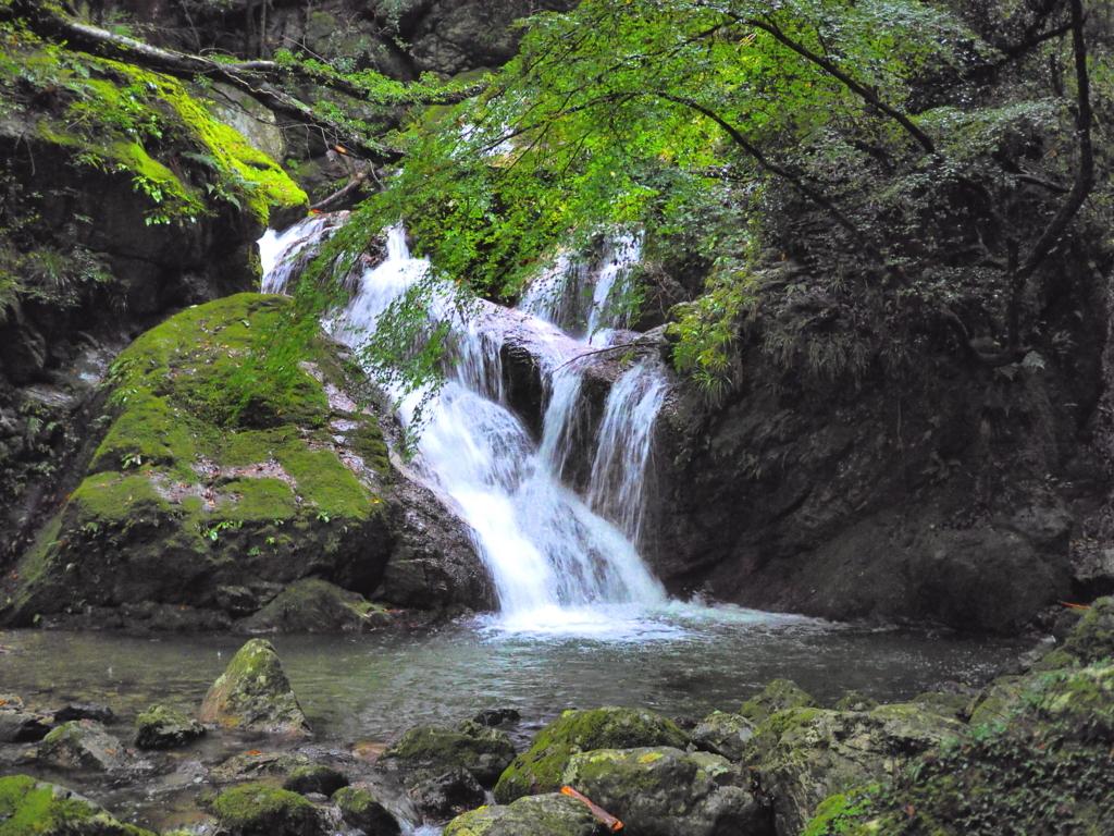 雨乞いの滝 うぐいす滝