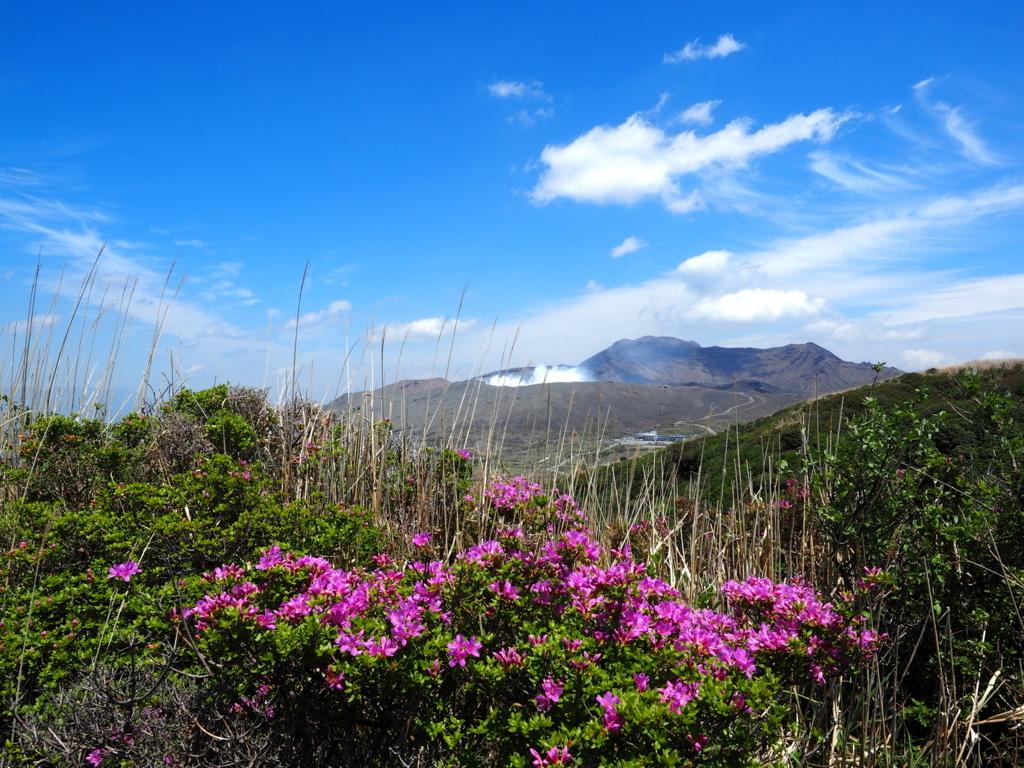 烏帽子岳 ミヤマキリシマと阿蘇山