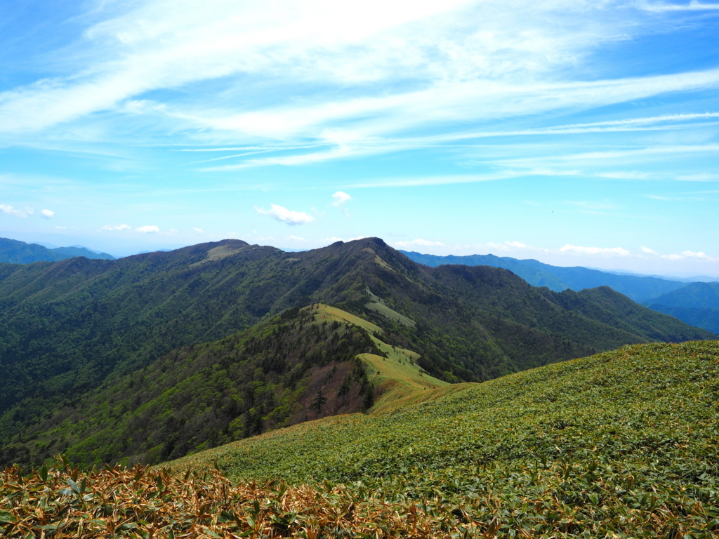 笹ヶ峰の稜線と青空