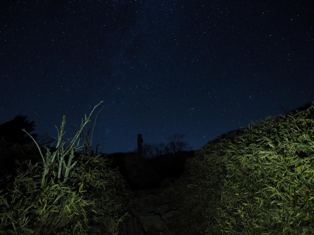 剣山ナイトハイク クマザサと星空