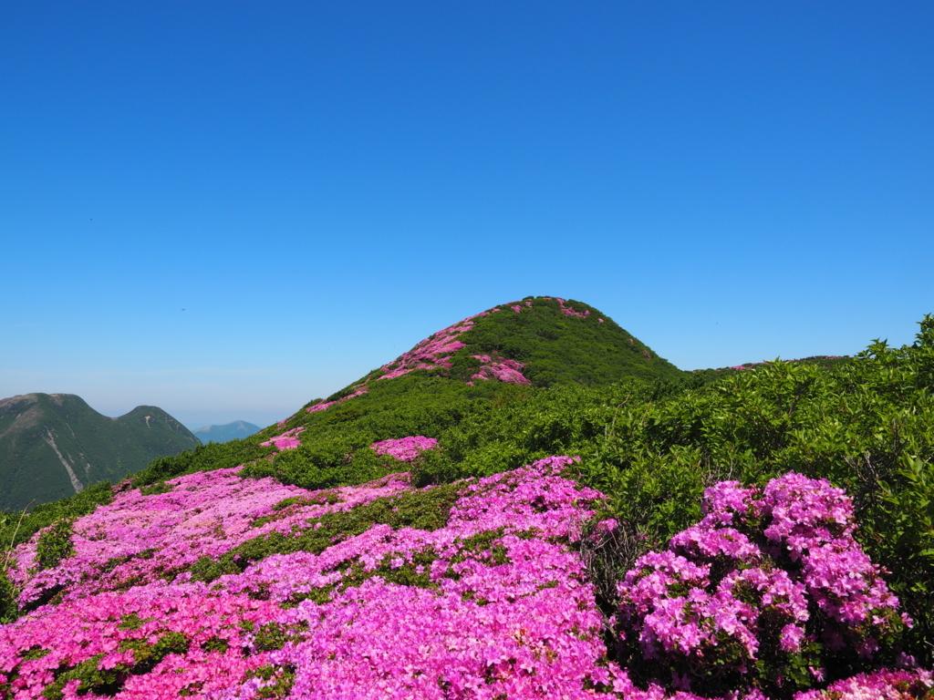北大船山とミヤマキリシマ