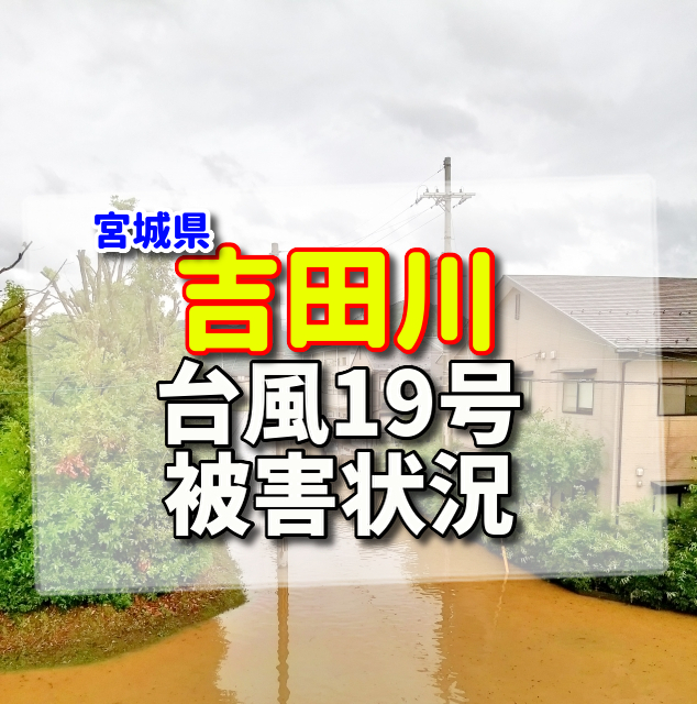 吉田川,氾濫