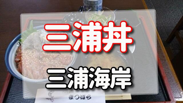 三浦丼,三浦海岸駅,まつばら,まぐろ