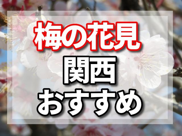 梅 花見 関西