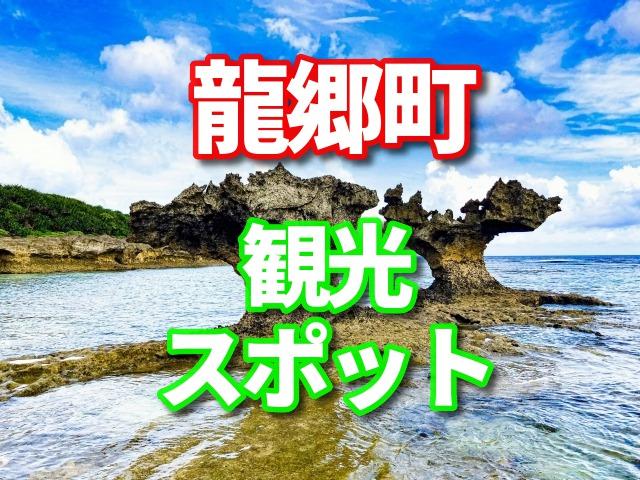 龍郷町 観光 ふるさと納税