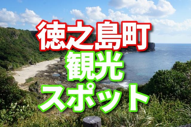 徳之島町 観光スポット