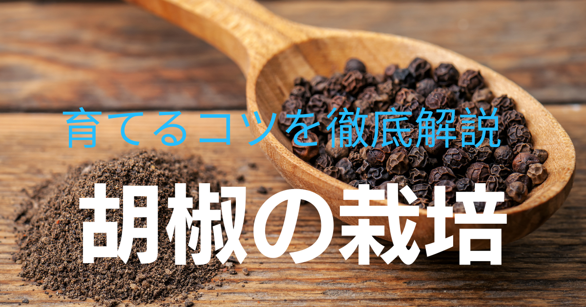 f:id:toriyosesyogun:20210423002036p:plain