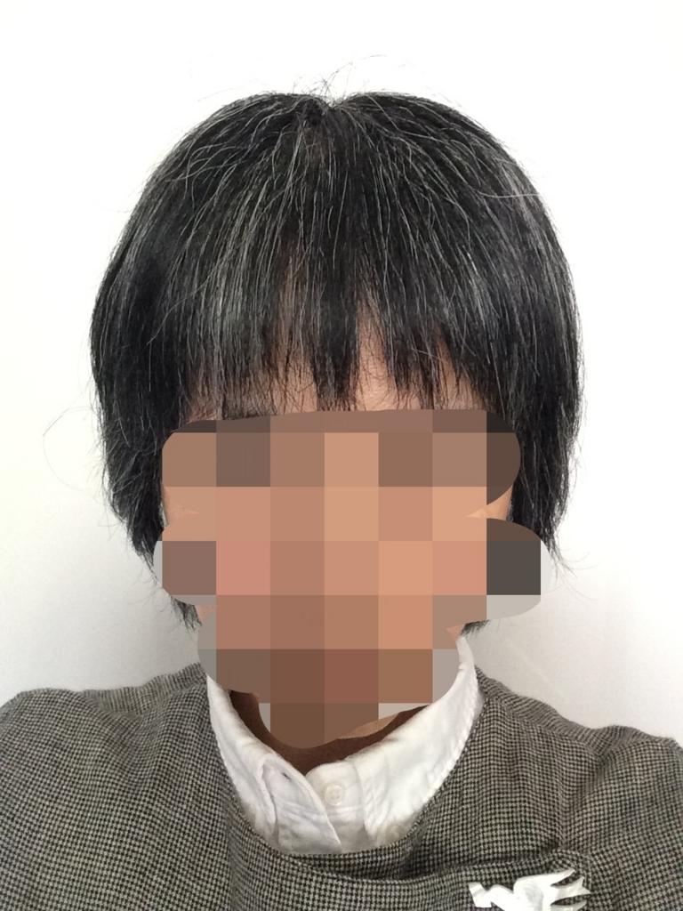 f:id:toro_o:20170613141205j:plain