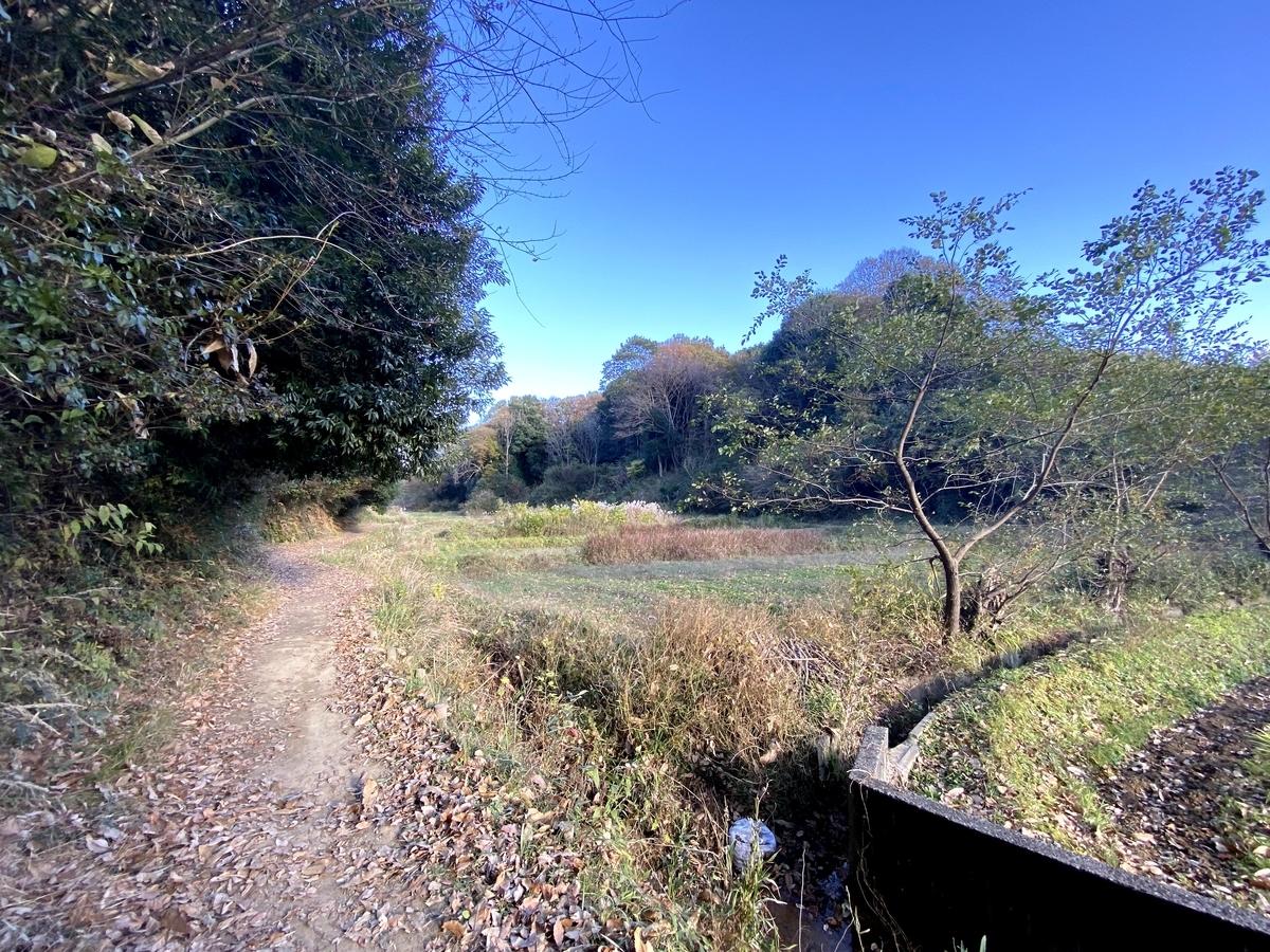 小野路のトレイル