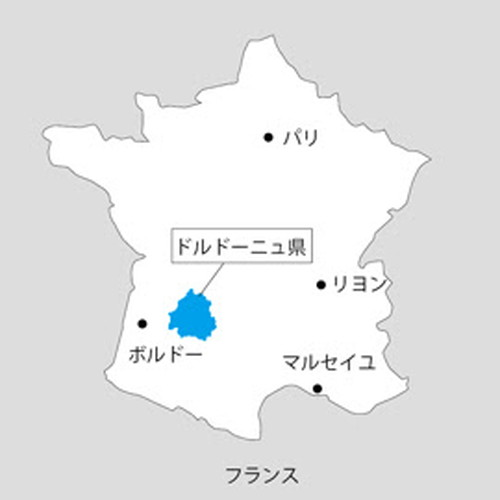 f:id:toruhijino:20201201111618j:plain