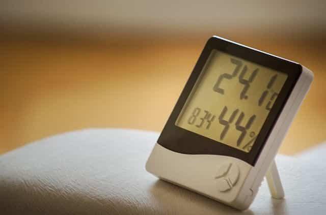 デグーの低体温症対策