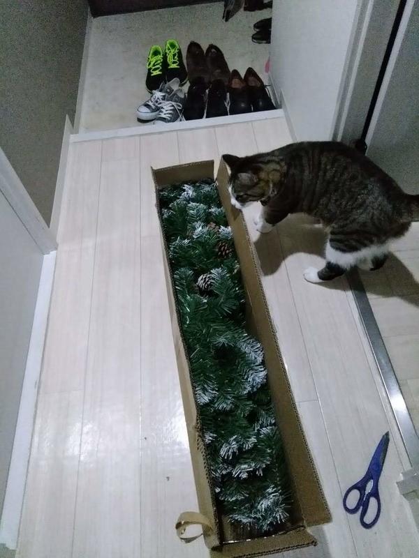 開封したクリスマスツリー