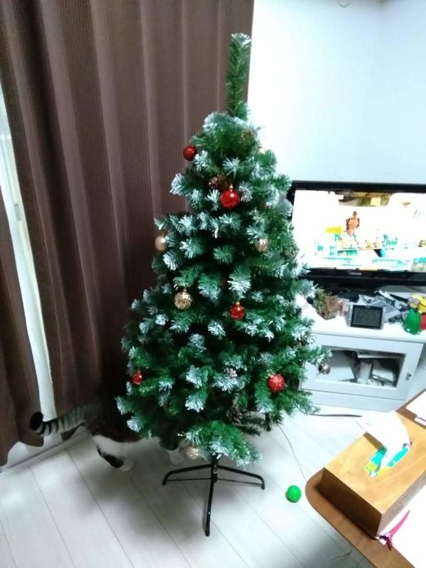 飾り付けたクリスマスツリー