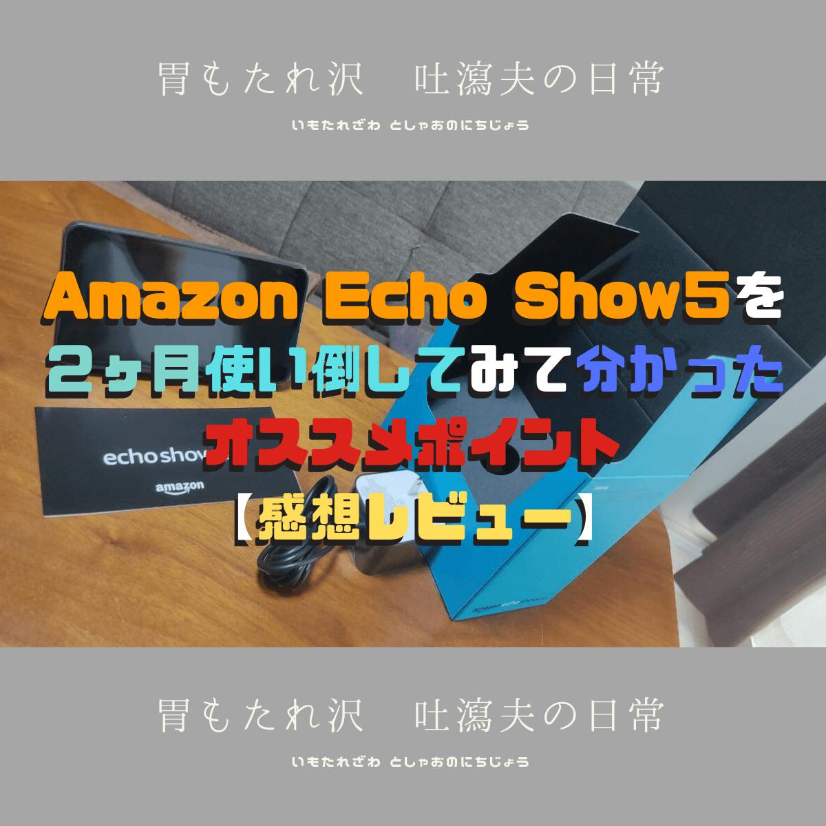 Amazon Echo Show5を 2ヶ月使い倒してみて分かった オススメポイント 【感想レビュー】