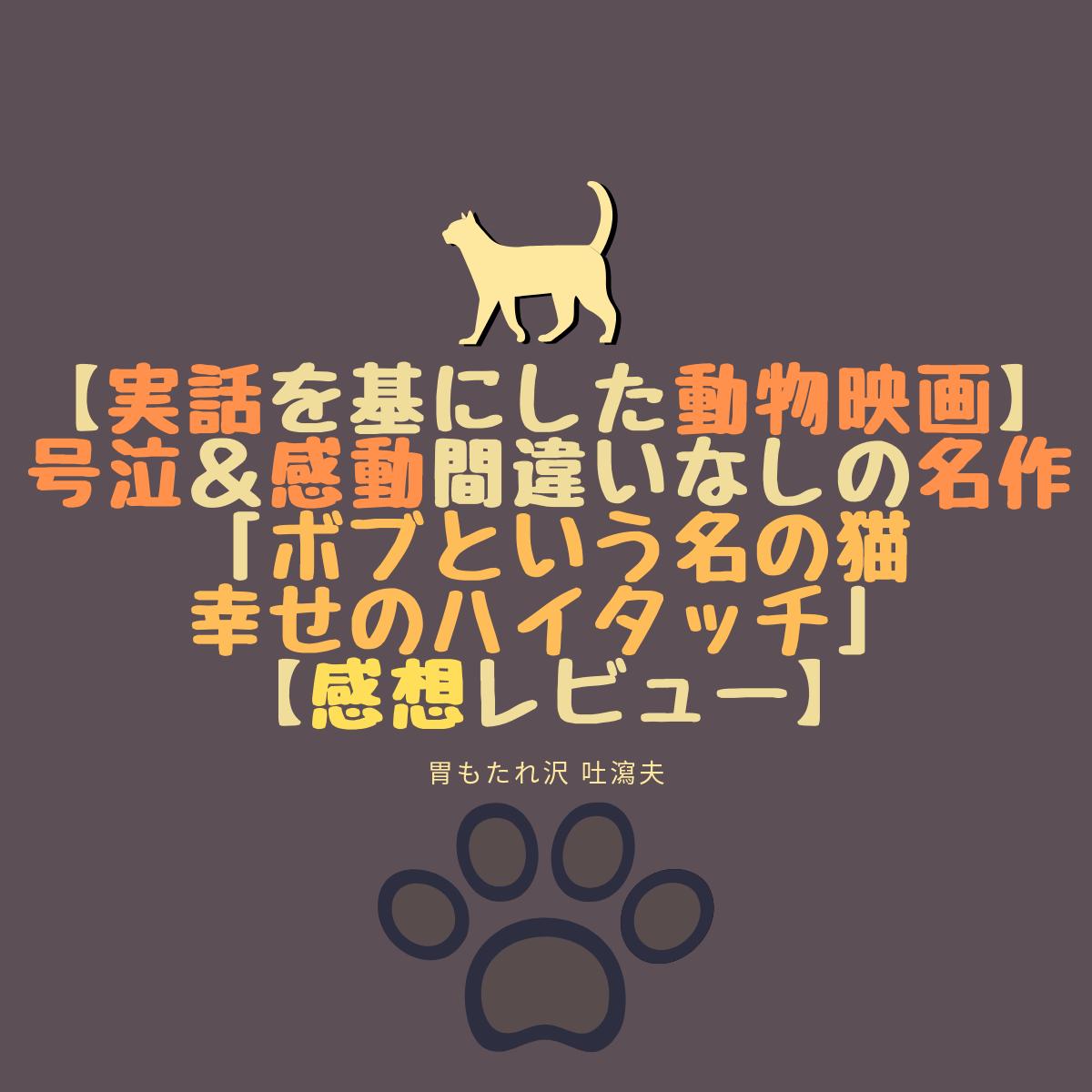 【実話を基にした動物映画】号泣&感動間違いなしの名作「ボブという名の猫 幸せのハイタッチ」【感想レビュー】