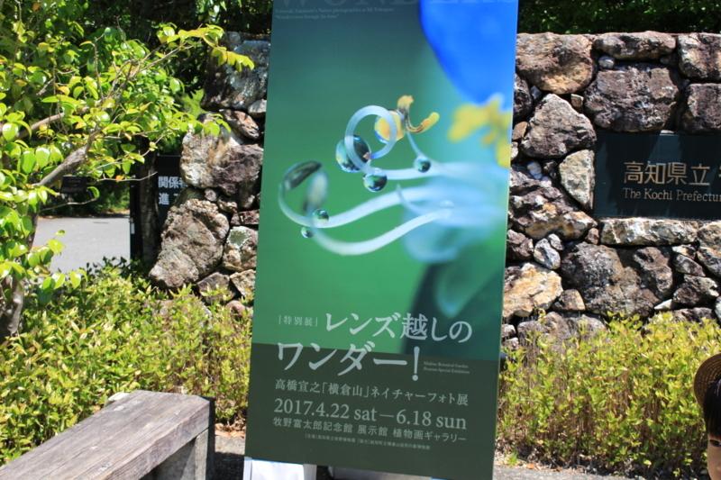f:id:toshi-k-yuto:20170604102848j:plain