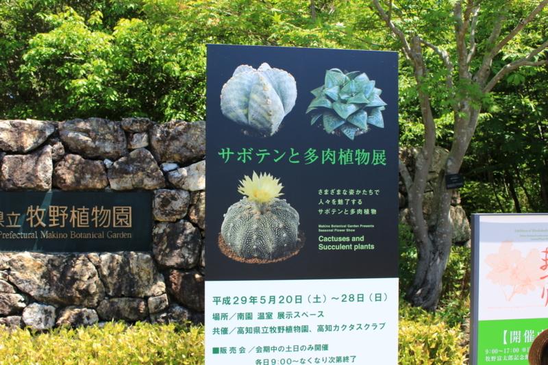 f:id:toshi-k-yuto:20170604102849j:plain