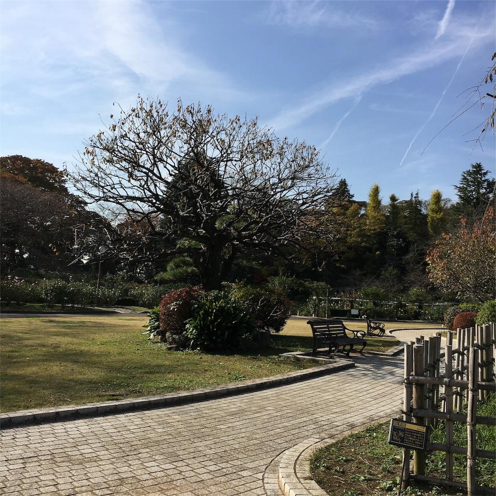 f:id:toshi-kuma25317:20161204003156j:image