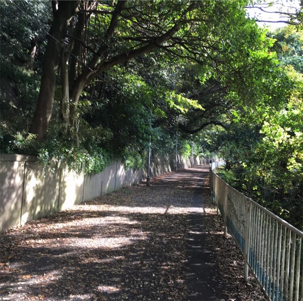 f:id:toshi-kuma25317:20161217222300j:image