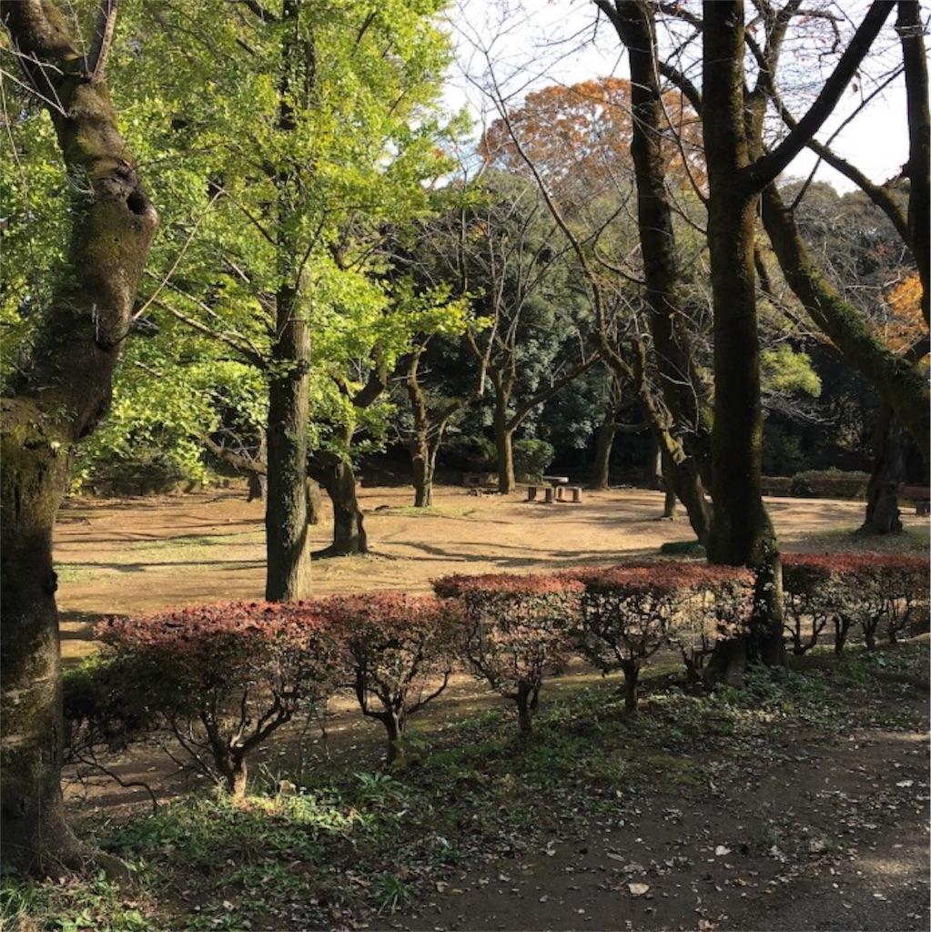 f:id:toshi-kuma25317:20161217223144j:image
