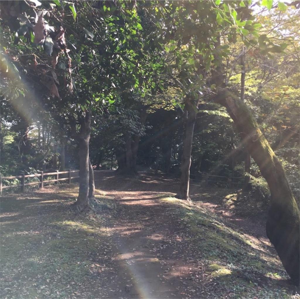 f:id:toshi-kuma25317:20161217223208j:image