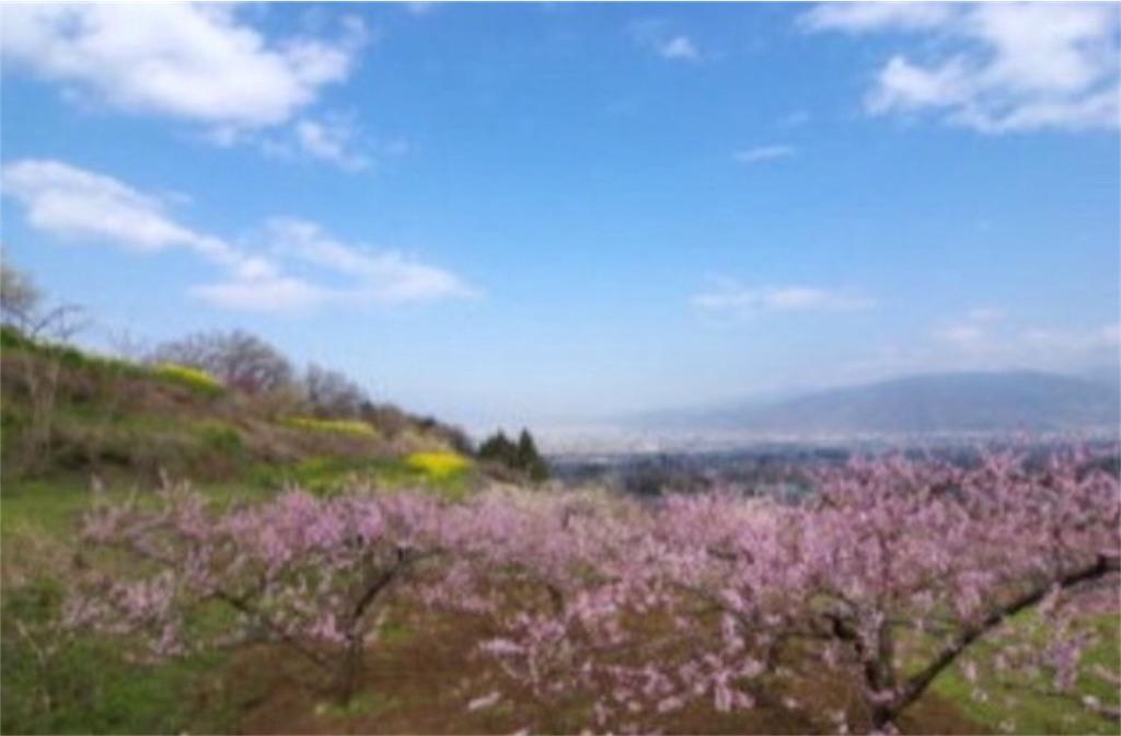 f:id:toshi-kuma25317:20170221151838j:image
