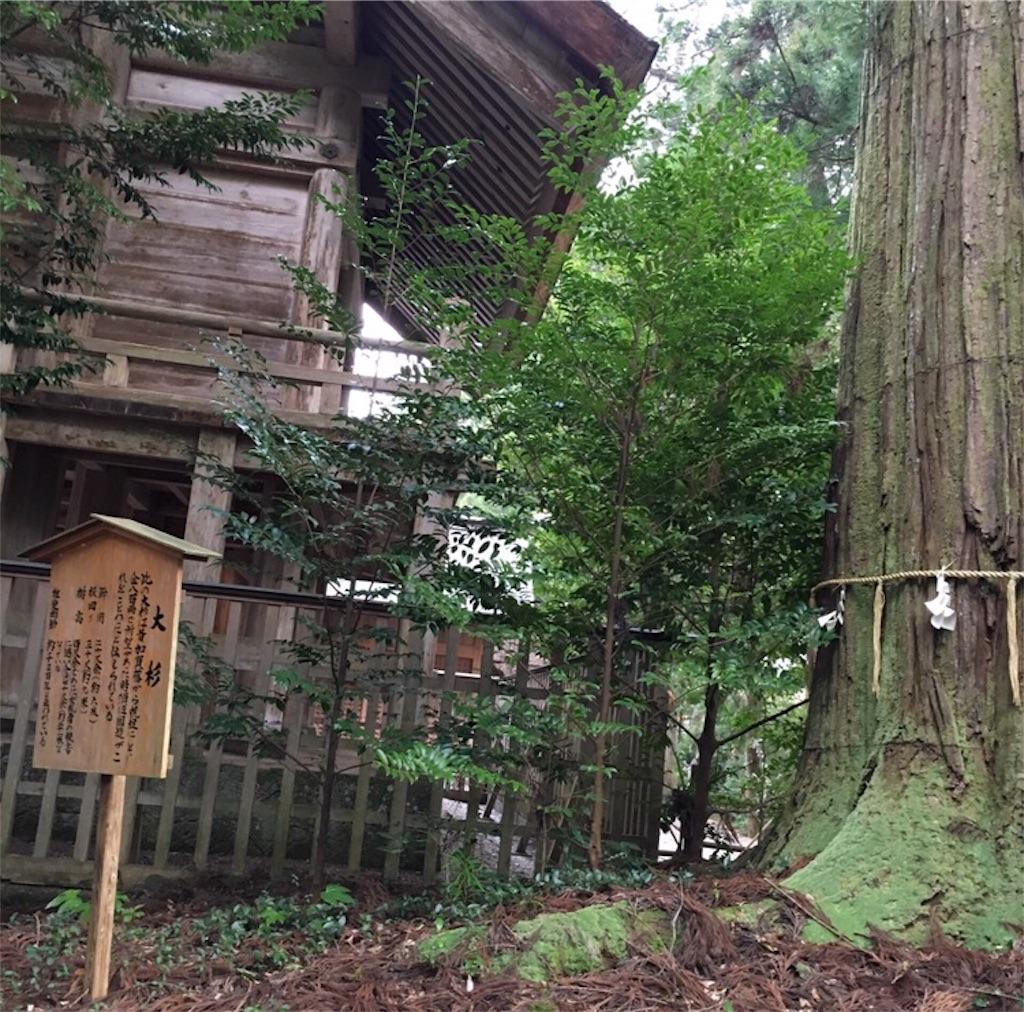 f:id:toshi-kuma25317:20170313124534j:image