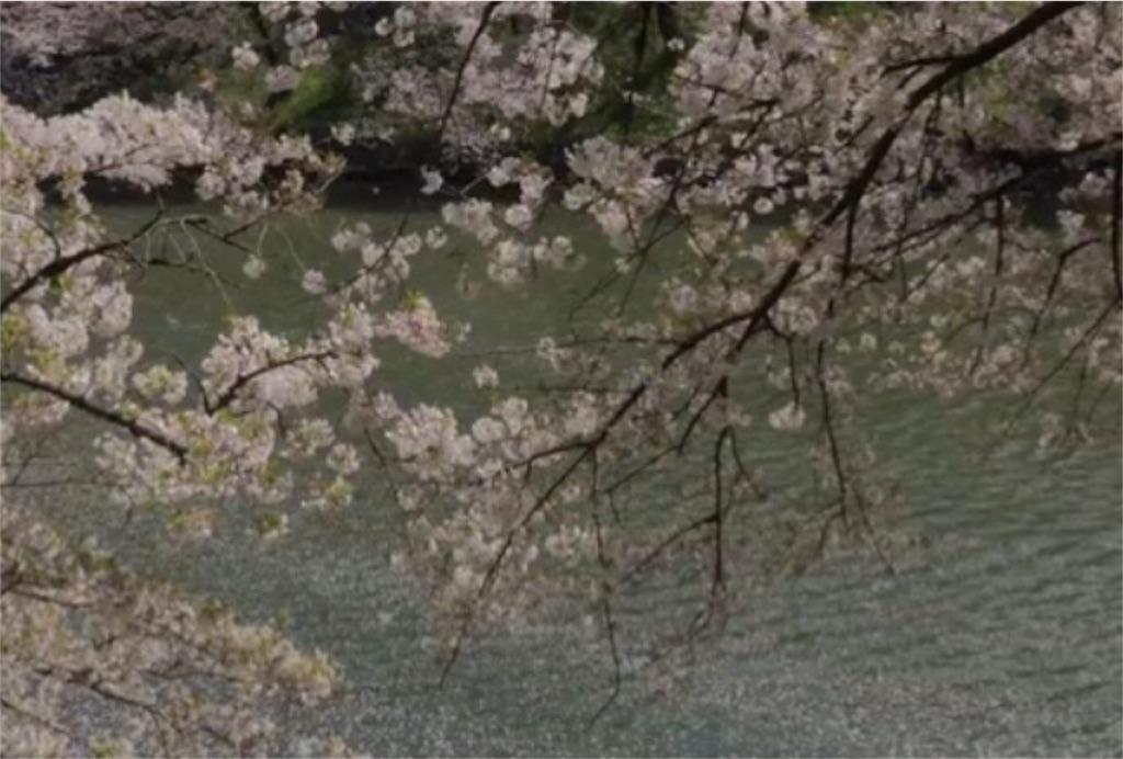 f:id:toshi-kuma25317:20180313160343j:image