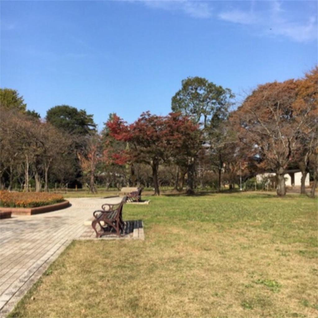 f:id:toshi-kuma25317:20180509110932j:image