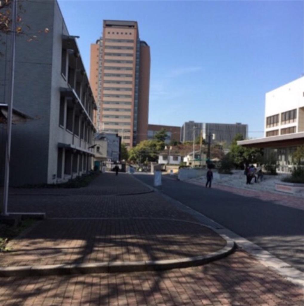 f:id:toshi-kuma25317:20180509111254j:image