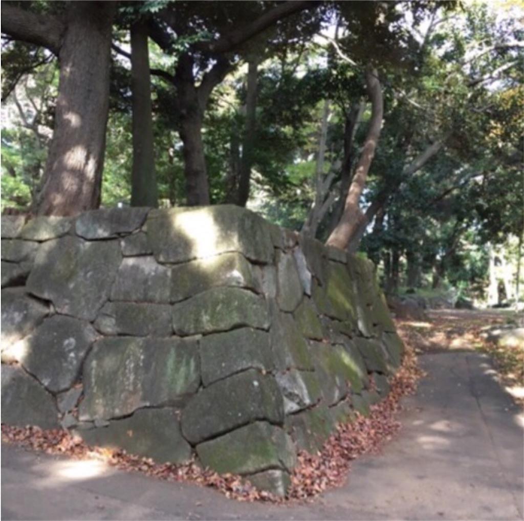 f:id:toshi-kuma25317:20180509111531j:image