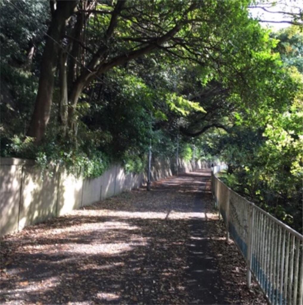 f:id:toshi-kuma25317:20180509111720j:image