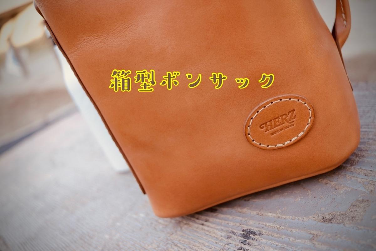 f:id:toshi-pixy:20201229115920j:plain