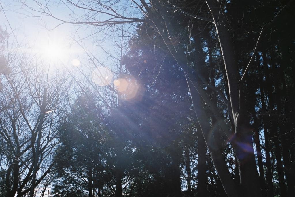 f:id:toshi0690:20170221211123j:plain