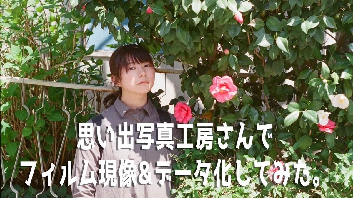 f:id:toshi0690:20190511223520j:plain