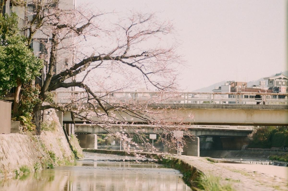 f:id:toshi0690:20200425021103j:plain