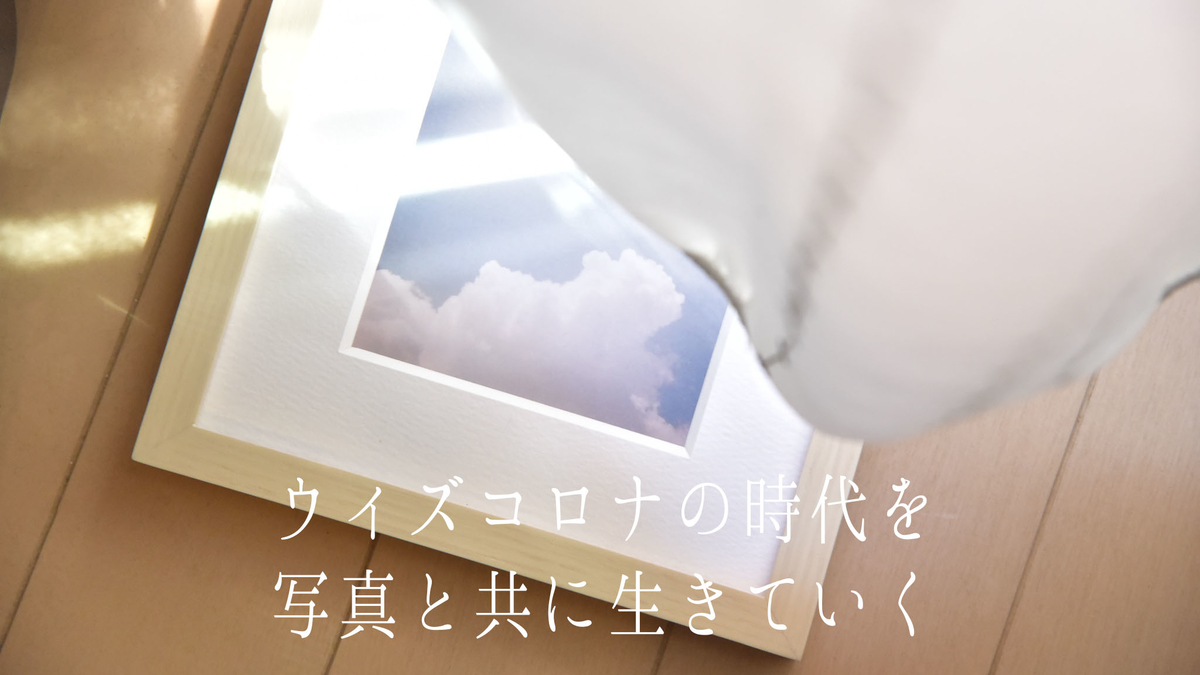 f:id:toshi0690:20200508160104j:plain