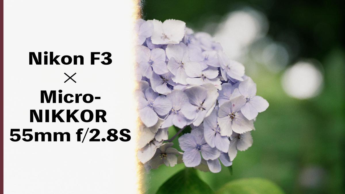 f:id:toshi0690:20210814001247j:plain