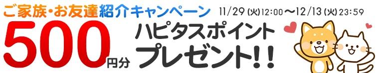f:id:toshi0809:20161212221153j:plain