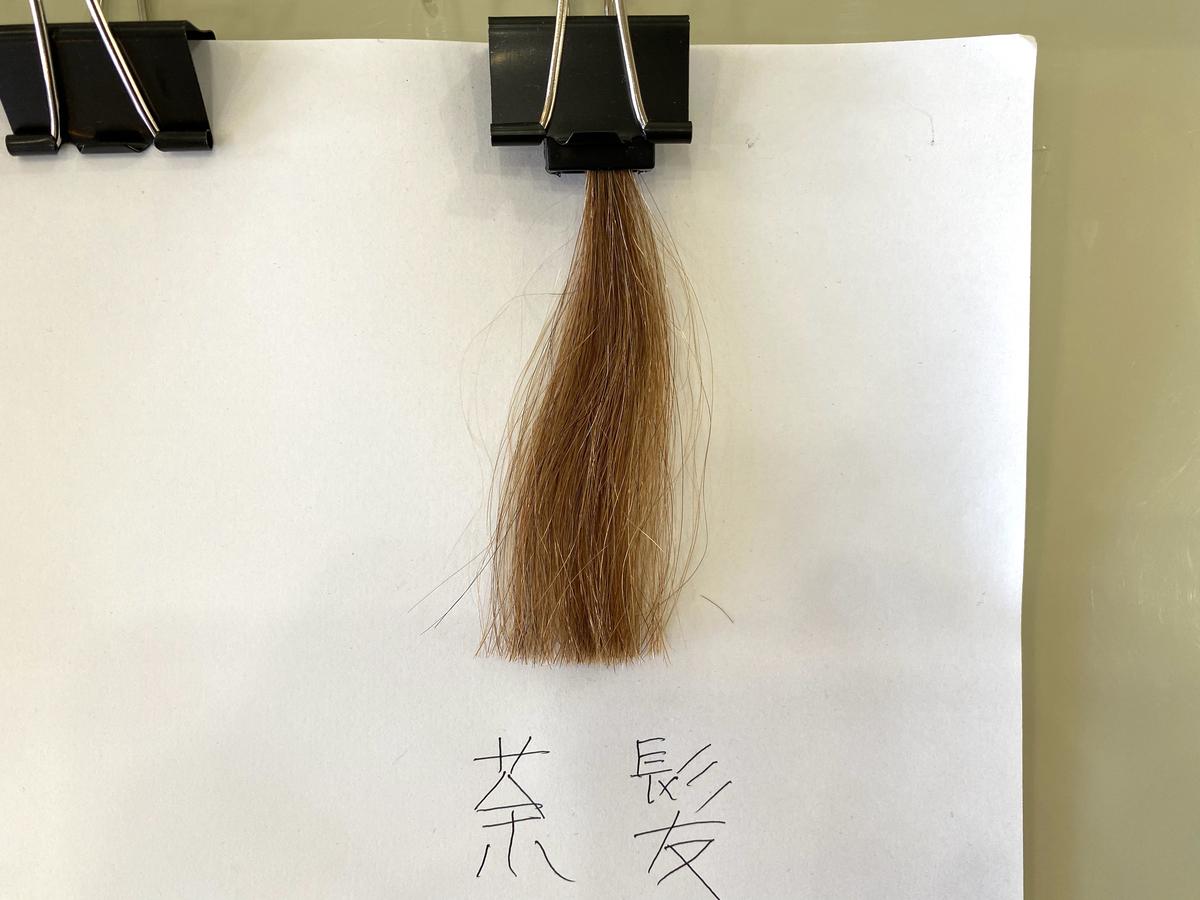 染める前の茶髪の毛束