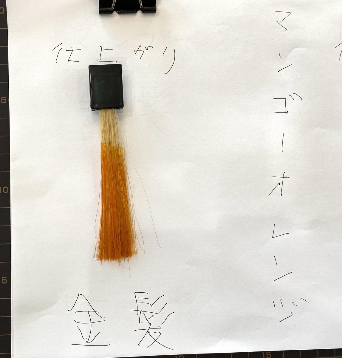 マンゴーオレンジで染めた後の金髪の毛束
