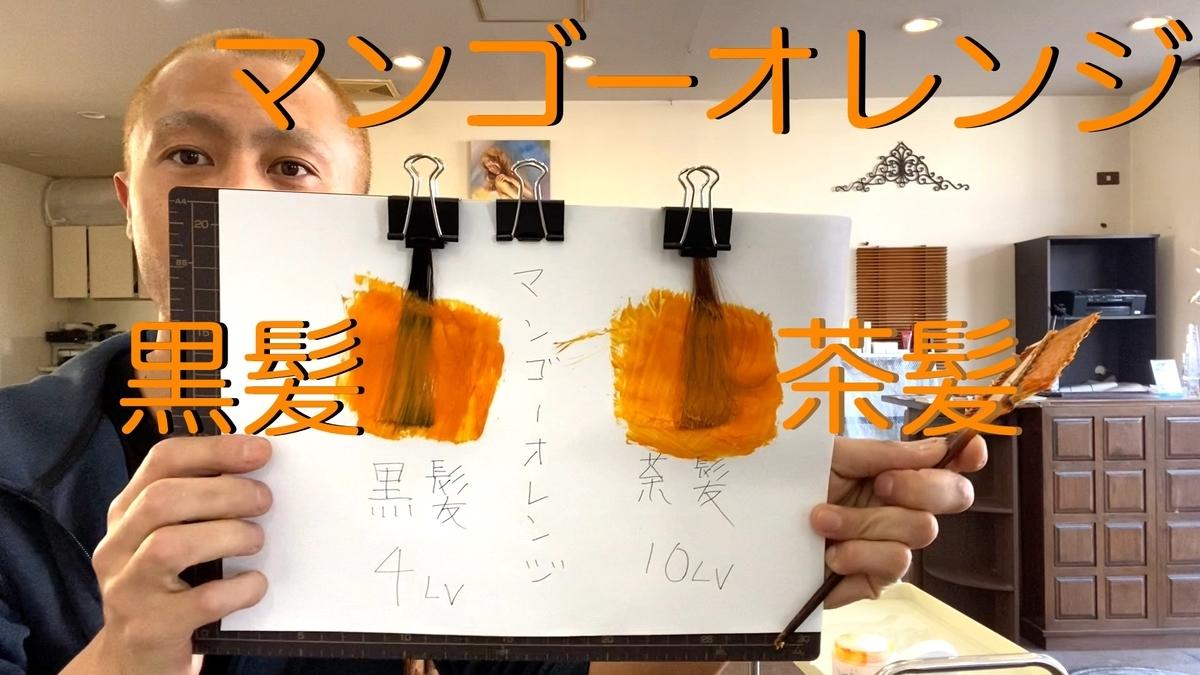 【カラーバター マンゴーオレンジ】黒髪と茶髪に染め比べ